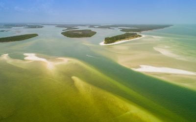 10 Ways to Enjoy the Ten Thousand Islands of Florida